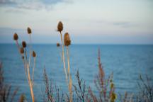 Ein Blick auf die Ostsee