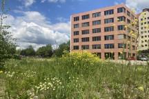 Noch steht das Wehnerhaus alleine auf dem Baugrundstück gegenüber des Landtags.